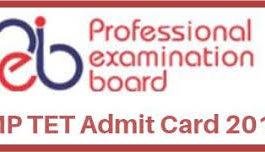 MP TET Admit Card 2018
